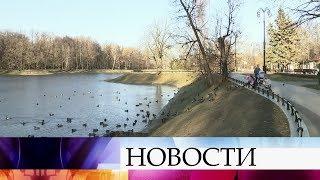 Минувшая ночь в Москве стала самой холодной за всю осень.