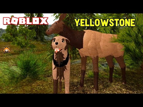 ROBLOX YELLOWSTONE Extra Game Pass + FOOD FOR PUPS 🤢 & Moose Hunting