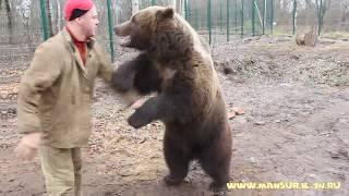 Когда медведь хочет играть и чешется спинка.