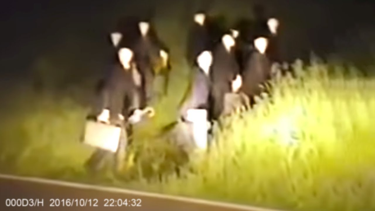 Download Strangest Things Caught On Dashcam