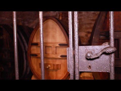le plus vieux vin du monde encore conservé en tonneau