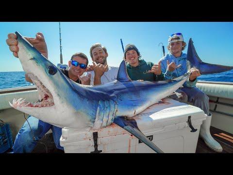 Mako SHARK! Catch Clean Cook (Offshore Fishing New York)