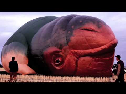 The Skywhale First Flight