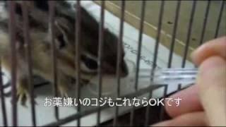 お薬飲んで! 三宅梢子 動画 20