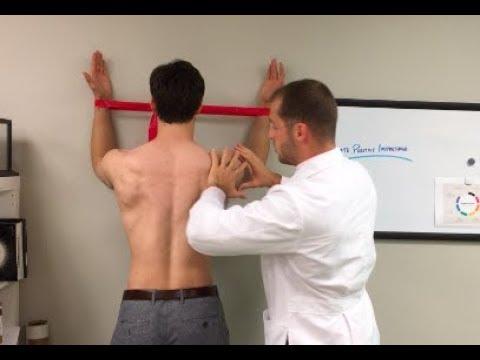 E:33 Wall Slides Retrain Your Shoulder Blades!