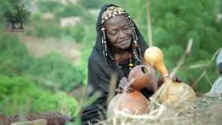 Musical Traditions in Mali | Now, Money is More Important than Humanity.