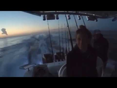 Offshore Trip