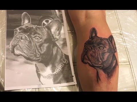 Tattoo Timelaps - Frenchie Bulldog - Making realistic portre black and grey tattoo