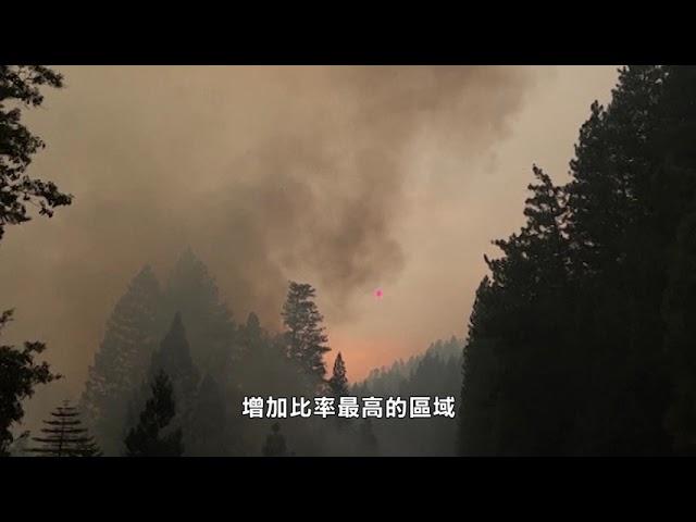 全國:導致山火因素 包括氣候變化和乾旱