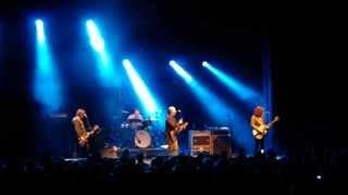 Dig It Up!  Sydney - Hoodoo Gurus *Miss Freelove