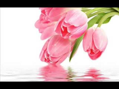 la-bella-baskets- -kim's-la-bella-baskets-gift-baskets-&-fresh-flower-bouquets