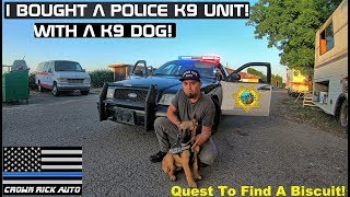 searching-a-police-k9-unit-with-police-dog-crown-rick-auto