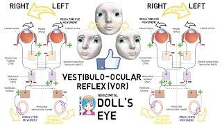Video INSTANT NEURO - Doll's Eye download MP3, 3GP, MP4, WEBM, AVI, FLV November 2017