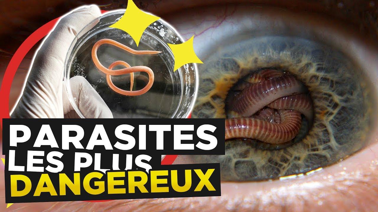 Les parasites qui mangent des poissons