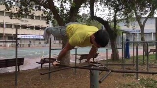 Static Strength Moves [2016] - Street Workout / Calisthenics