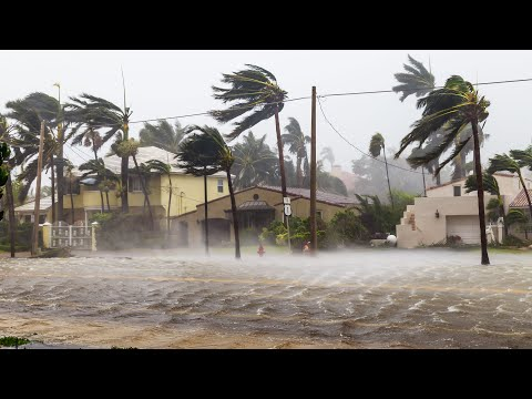 Dangerous hurricane Elsa with 140 km/h wind destroys Barbados and moves to the USA, Florida