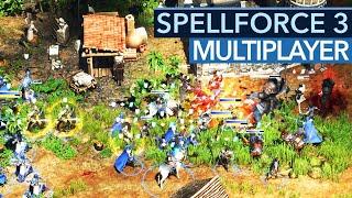 Spellforce 3 im Multiplayer: GameStar gegen den Entwickler