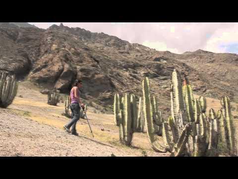 Caminata por el valle del río cañete. Viajes Lima