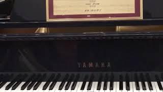 ロビーにて〜宝塚歌劇雪組公演「ひかりふる路」ピアノ自動演奏.