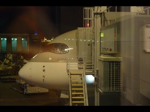 Qatar Airways Airbus A350 XWB Economy Doha to Singapore