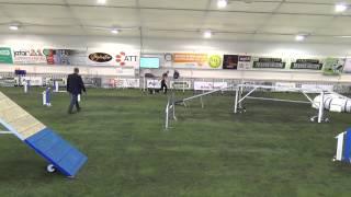 Tyyni-Tuuli & Elda PM-2015 16082015 joukkuefinaalirata
