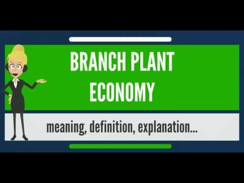 What is BRANCH PLANT ECONOMY? What does BRANCH PLANT ECONOMY mean? BRANCH PLANT ECONOMY meaning