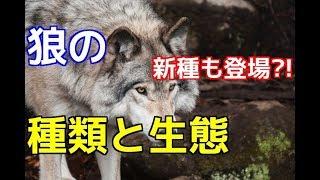 チャンネル登録を御願いします☆→http://ur0.pw/Gf0q 今回の動画は、前回...