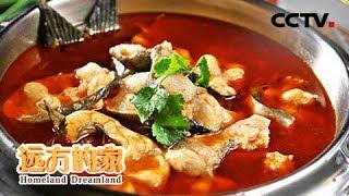 《远方的家》 20190430 春末夏初的味道——正是鱼鲜肥美时| CCTV中文国际