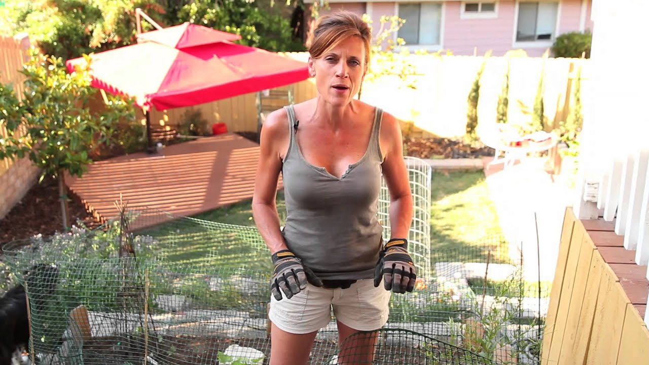 Mature milf photo gallery