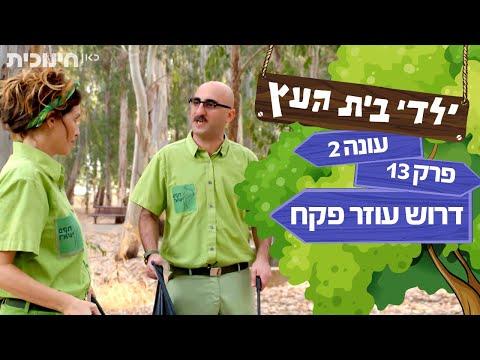 ילדי בית העץ עונה 2: דרוש עוזר פקח