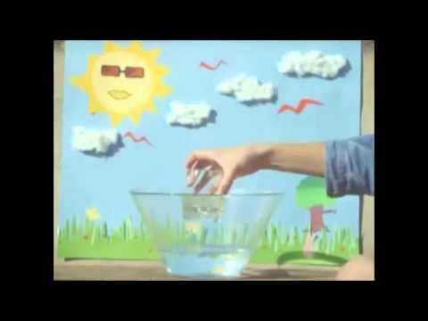 El Ciclo Del Agua Taller Youtube