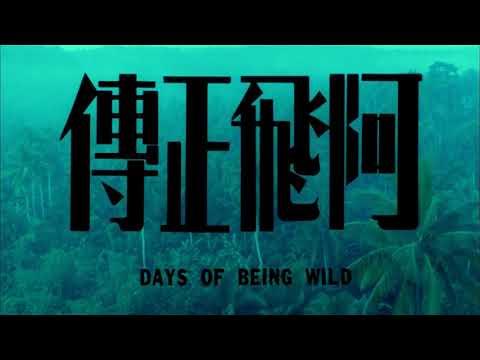 阿飛正傳 (Days of Being Wild)電影預告