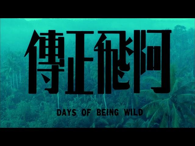 9.28 【阿飛正傳】數位修復版 正式預告