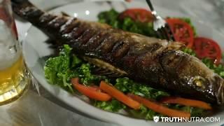 Fish Collagen: Marine Collagen Benefits For Skin, Bones, and Tendons