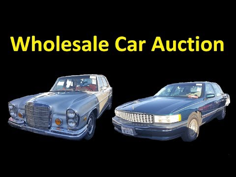 Dealer Auto Auction Cars for Sale Wholesale Used Car Buying Tips