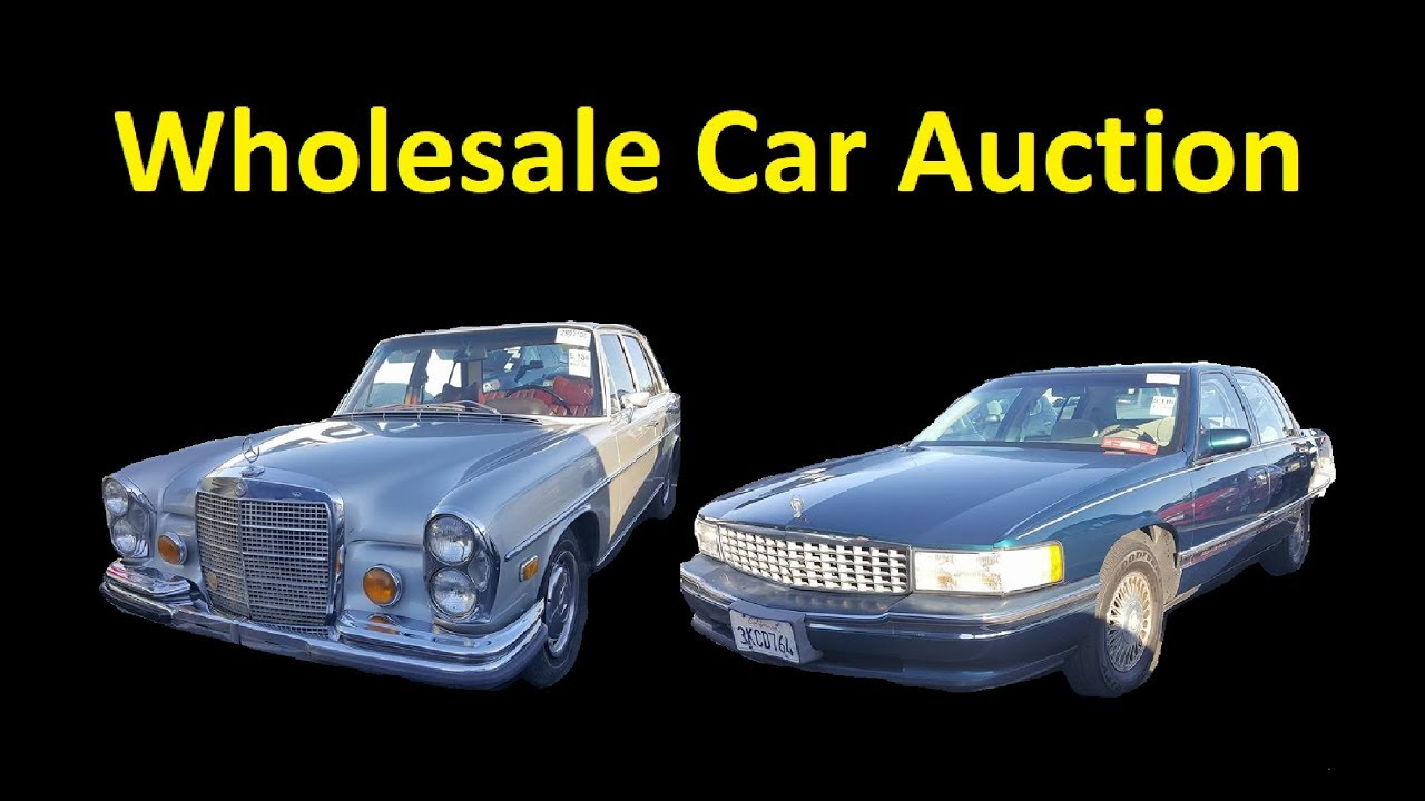 Auction Cars For Sale >> Dealer Auto Auction Cars For Sale Wholesale Used Car Buying Tips
