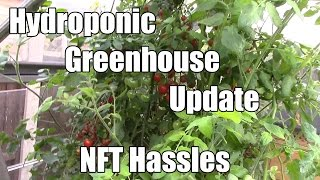 Hydroponic Greenhouse Update - NFT Hassles - 19th September 2015