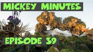 Pandora Awakens and a new Mountain for Magic Kingdom?!   Mickey Minutes Ep 39