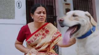 Download Mp3 Mittu  Dog  | Man's Best Friend | Mj |  English Subs