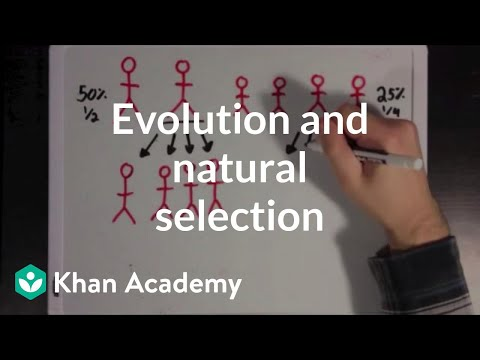 Evolution and natural selection | Biomolecules | MCAT | Khan Academy