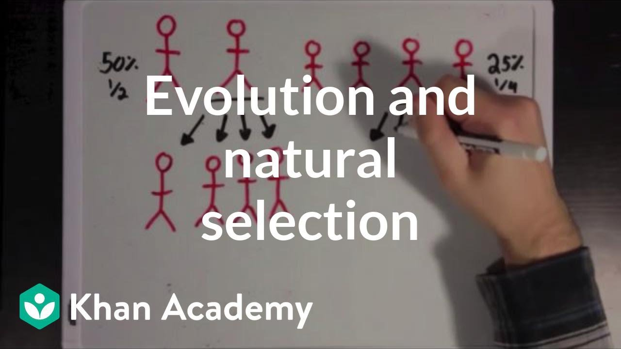 Evolution and natural selection (video) | Khan Academy