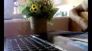 bài hát 5 bông hoa... st. johan83. guitar