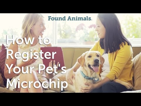 How To Register Your Pet's Microchip