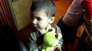 Zsolti a béka (Zsolti the frog)