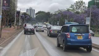 Ulica z fioletowymi drzewami - centrum Nairobi - Kenia- Afryka