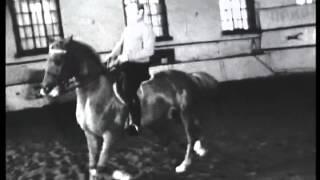 Иван и Миша Кизимовы 1973 год. Я - на Ихоре конечно.-)
