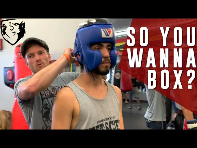 So You Wanna be a Boxer? (4-Week Boxing Fight Camp)