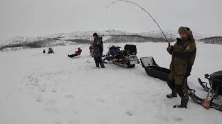РЫБАЛКА В БАРЕНЦЕВОМ МОРЕ СО ЛЬДА ICE FISHING IN THE BARENTS SEA