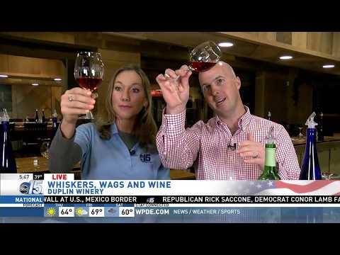 Amanda Live at Duplin Winery - Good Morning Carolinas - WPDE ABC 15