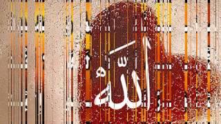 لا تنسى ابدا ذكر الله محمد و ديمه بشار بدون ايقاع